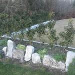 Rockery Stones - Image 1